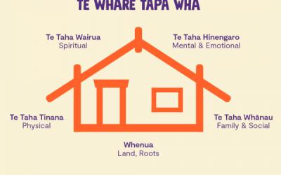 Te Whare Tapa Wha – my thoughts
